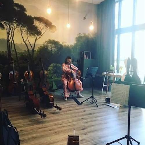 cello huren-kopen-1 - celloles.nl