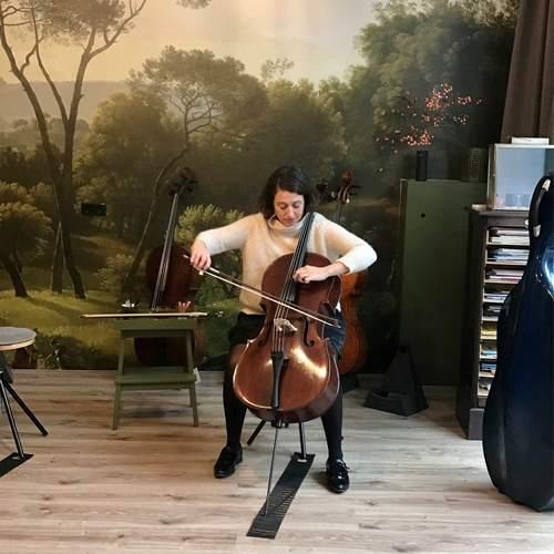 cello huren-kopen-celloles.nl4