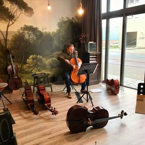 cello huren-kopen-celloles.nl5